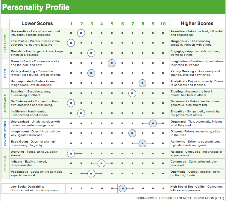 big five personality inventory The big five personality factor theory evaluates personality according to the  five main factors of extraversion, agreeableness, conscientiousness, neuroticism .